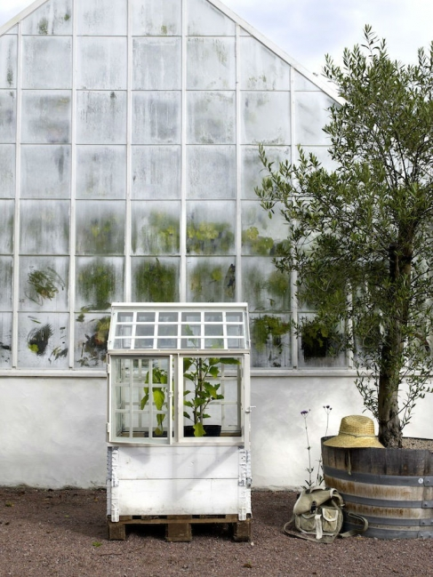 Greenhouse invernadero blanco