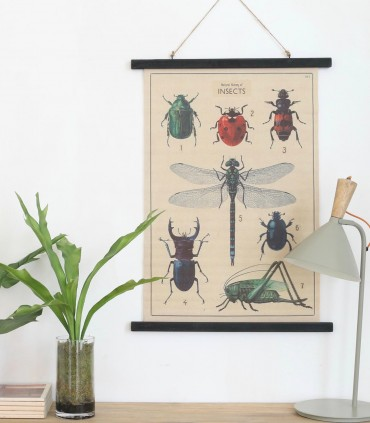 Lienzo insectos
